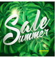 summer sale tropical design with palm leaves vector image vector image