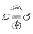 cartoon fruits on white background hand drawn vector image