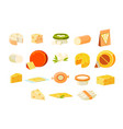 collection of cheesets pieces of popular kinds of vector image vector image