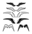graphic collection wings vector image