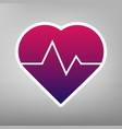 heartbeat sign purple vector image vector image