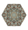 hexagonal vintage ornament vector image vector image