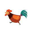 rooster with bright plumage farm cock running vector image vector image