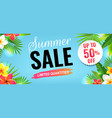 summer sale with flowers border vector image