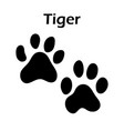 tiger footprint vector image vector image