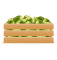 wooden box of apples vector image vector image