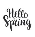 Hello Spring phrase vector image