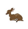 Baby deer lying silhouette