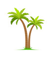 palm tree island coconut cartoon icon vector image