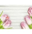 Pink tulips over white wood EPS 10 vector image vector image