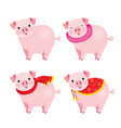 set of pigs with clothing year of the pig vector image