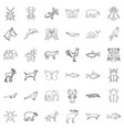 wild life icons set outline style vector image vector image