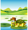 A happy turtle above the floating waterlily vector image vector image
