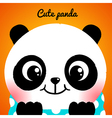 Cute little panda close-up vector image