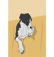 dog scratches his back on the floor vector image