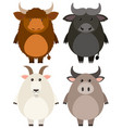 farm animals on white background vector image vector image
