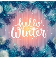 Hello Winter holiday background Christmas vector image