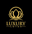 luxury lotus logo design inspiration vector image