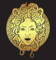 medusa gorgon golden head on a shield print design vector image vector image