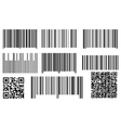 bar codes and qr codes vector image