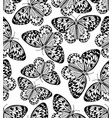 butterfly monochrome drawing black line drawing vector image vector image