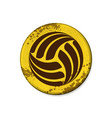 circle yellow volleyball grunge frame vector image vector image