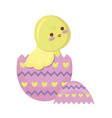 cute chicken of easter in egg vector image vector image