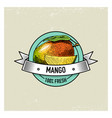 mango vintage hand drawn fresh fruits background vector image