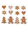 set gingerbread cookies decorative gingerbread vector image
