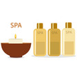spa therapy and beauty set of vector image vector image