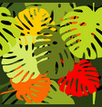 tile tropical pattern with exotic leaves vector image vector image