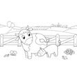 Cute cow feeding calf vector image vector image
