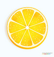 fresh lemon slice icon on a white vector image vector image
