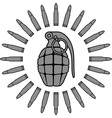 military sun vector image vector image