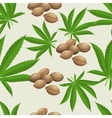 Seamless pattern with marijuana hemp leaves and vector image