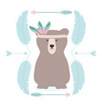 bear grizzly with feathers hat and frame vector image vector image