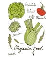Colorful set of fresh hand drawn vegetables vector image vector image