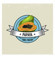 papaya vintage hand drawn fresh fruits background vector image