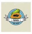 papaya vintage hand drawn fresh fruits background vector image vector image