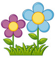 purple and blue flowers in garden vector image vector image