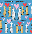 seamless pattern funny meerkat lovers vector image