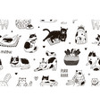 seamless pattern with meow inscription and cute vector image vector image