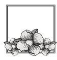 elegant frame with floral decoration vector image vector image