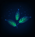 glowing plant with stem and green leaves made of vector image vector image