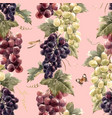 watercolor grape pattern vector image