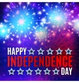 Fireworks background for 4th of July vector image