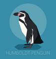 flat humboldt penguin vector image vector image