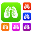 lungs set collection vector image