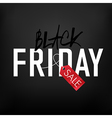 black friday on mesh black background vector image vector image