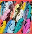 graphic pattern multicolored feathers vector image vector image